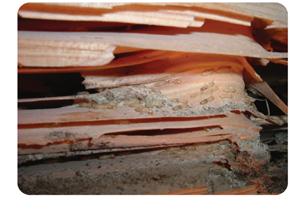 木造住宅が壊れていく最大の原因の1位は腐朽(ふきゅう)です 郡山市 家づくり 大原工務店の家造りのこだわり