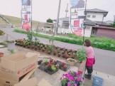 大原工務店の花壇|郡山市 新築住宅 大原工務店のブログ