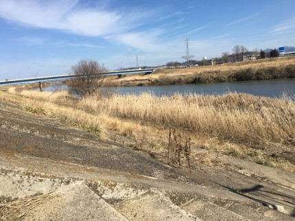 今日の阿武隈川の様子です。郡山市安積町|郡山市 新築住宅 大原工務店のブログ