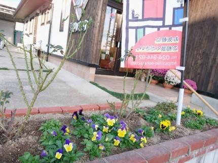 大原工務店の花壇です。| 郡山市 新築住宅 大原工務店のブログ