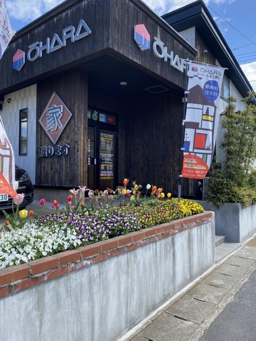 大原工務店の花壇、満開です! 郡山市 新築住宅 大原工務店のブログ