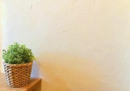 しっくいの壁