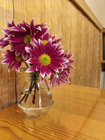 玄関土間にお客様から頂いたお花を飾ってみました
