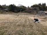 地縄を張っています。|郡山市 新築住宅 大原工務店のブログ