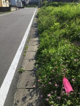 土地の敷地調査に行きました。田村市船引町 新築注文住宅の事前準備です。
