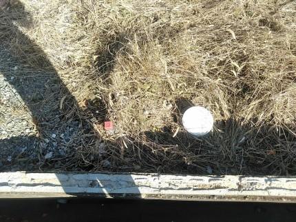 郡山市菜根で汚水桝を確認 | 郡山市 新築住宅 大原工務店のブログ